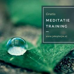 Leren Mediteren?